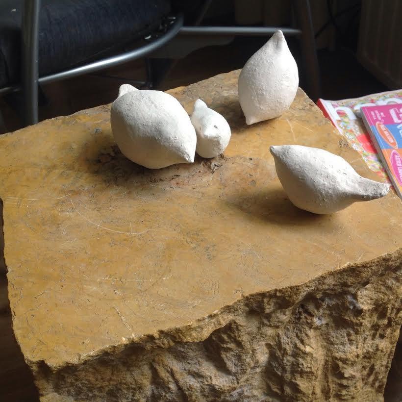 vogeltjes-workshop